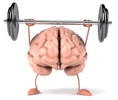 Max Mind Set muscle | Tom Terwilliger