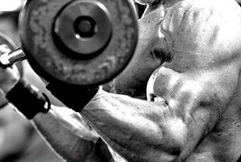 tom terwilliger strength personal growth plan